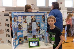 4th Grade Science Fair 2020